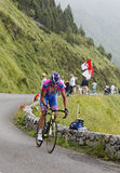 Der Radfahrer Alessandro Petacchi Stockbilder