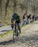 Der Radfahrer Yohann Gene im Wald von Arenberg- Paris Roubaix stockfotografie