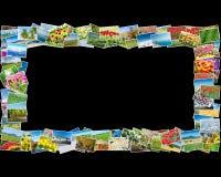 Der Rahmen gemacht von den verschiedenen Naturfotos Stockbilder