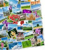 Der Rahmen gemacht von den verschiedenen Naturfotos Lizenzfreies Stockbild