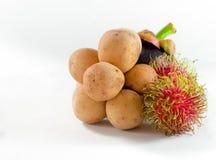 Der Rambutan und das Longkong mit Mangostanfrucht sind südlicher Asiat f der Frucht Lizenzfreie Stockbilder