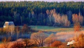 Der Rand des Waldes Stockfotografie