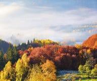 Der Rasen wird durch die Sonnenstrahlen erleuchtet L?ndliche Landschaft des majest?tischen Herbstes Fantastische Landschaft mit M stockfotografie