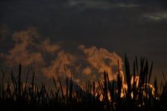 Der Rauch bei Sonnenuntergang Stockfotos
