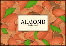Der rechteckige Rahmen auf Mandelnusshintergrund Vektorkartenillustration Nüsse, Mandeln tragen im Oberteil Früchte, ganz Stockbild