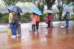 Der Regen, der auf Busausgangsleute wartet Lizenzfreies Stockfoto