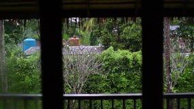Der Regen hinter dem Fenster in den Tropen stock footage