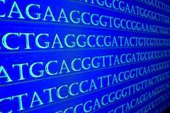 Der Reihe nach ordnen des Genoms Lizenzfreie Stockfotos