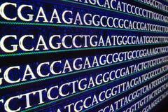 Der Reihe nach ordnen des Genoms im Labor Stockfotografie