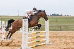 Der Reiter springend auf ein braunes Pferd Stockfotografie
