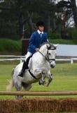 Der Reiter springend mit Pferd Lizenzfreie Stockfotos