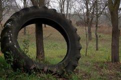 Der Riese von Reifen stockbild