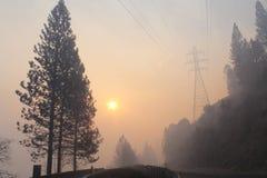Der Rim Fire In Yosemite | 2013 | Rauch u. Bäume Stockfotografie