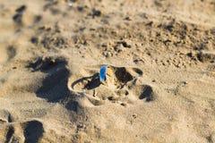 Der Ring gefunden im Strand Stockfotos