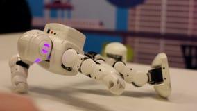Der Roboter wird heraus auf den Händen ausgepreßt Moderne Robotertechnologien Künstliche Intelligenz Kybernetische Systeme heute  stock footage