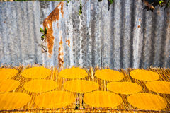 Der rohe riesige knusperige Reis trocknet auf getrocknetem cogon Gras stockbilder