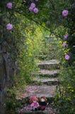 Der Rosengarten für Liebe Stockbild