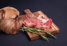Der rote hungrige Hund versucht, ein Stück Marmorfleisch von der Tabelle zu stehlen Steak ribeye mit Gewürzen auf einem hölzernen stockfotografie