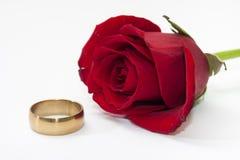 Der rote Rosen- und Goldring Lizenzfreie Stockfotos