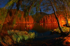 Der rote See oder Killer See, Ost-Karpaten, Rumänien Stockfoto