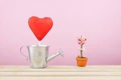 Der rote vereitelte Schokoladenherzstock mit kleiner silberner Gießkanne und mini gefälschter Blume im braunen Blumentopf auf höl Lizenzfreies Stockfoto
