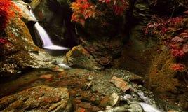 Der rote Wasserfall Lizenzfreies Stockbild
