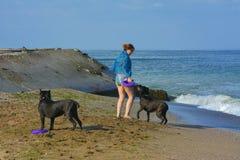 Der Rottweiler-Hund und ihre Geliebte im Wasser Stockbilder