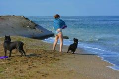 Der Rottweiler-Hund und ihre Geliebte im Wasser Lizenzfreie Stockbilder