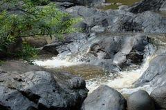 Der ruhige Fluss Stockbild