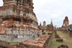 Der Ruinetempel im ayutthaya Stockbilder
