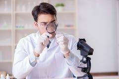 Der sachverständige Kriminologe, der im Labor für Beweis arbeitet stockbild