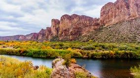 Der Salt River und die umgebenden Berge Lizenzfreie Stockfotografie