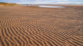 Der Sand auf dem Finnischen Meerbusen nahe St Petersburg Russland Sommer 2016 Lizenzfreie Stockbilder