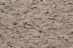 Der Sand auf dem Strand in dem Teich Beschaffenheit Stockfotos