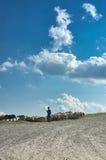 Der Schäfer und die Schafe Stockfotos