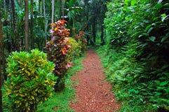 Der schöne Garten. Lizenzfreies Stockfoto