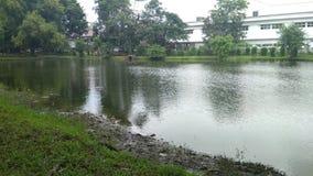 Der schöne See Der breite See Der Stoff von Bäumen nähern sich breitem See lizenzfreies stockfoto