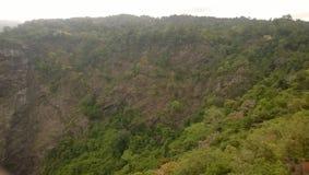 Der schöne Wald lizenzfreies stockbild