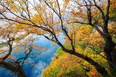 Der sch?ne Herbst szenisch stockbild
