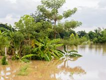 Der Schaden von den Fluten Stockbild