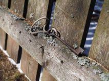 Der Schlüssel im Wald auf dem alten Zaun ist eine Universalkombination der Funktionalität und der Eleganz stockbild