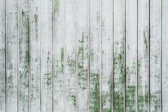 Der Schmutz, der Weiß abzieht, malte Eichen-Bretthintergrund mit Moos Lizenzfreies Stockfoto