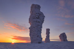 Der Schnee-gehende Wald ist in den Bergen von Nord-Ural lizenzfreie stockfotos