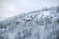 Der schneebedeckte Hügel stockbild