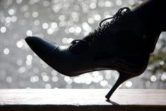 Der Schuh lizenzfreie stockbilder