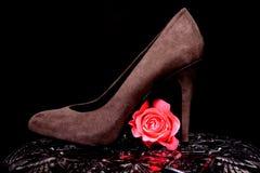 Der Schuh der Frau und stieg Stockfoto
