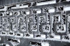 Der schwarze Metallzaun, bedeckt mit Eiskristallen Lizenzfreie Stockbilder