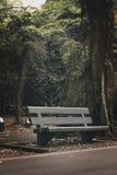 Der schwarze Stuhl im Park Lizenzfreie Stockfotografie