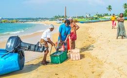 Der schwere Kasten mit Fischen Lizenzfreie Stockfotografie