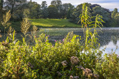 Der See in Blenheim-Palast, England Lizenzfreies Stockfoto